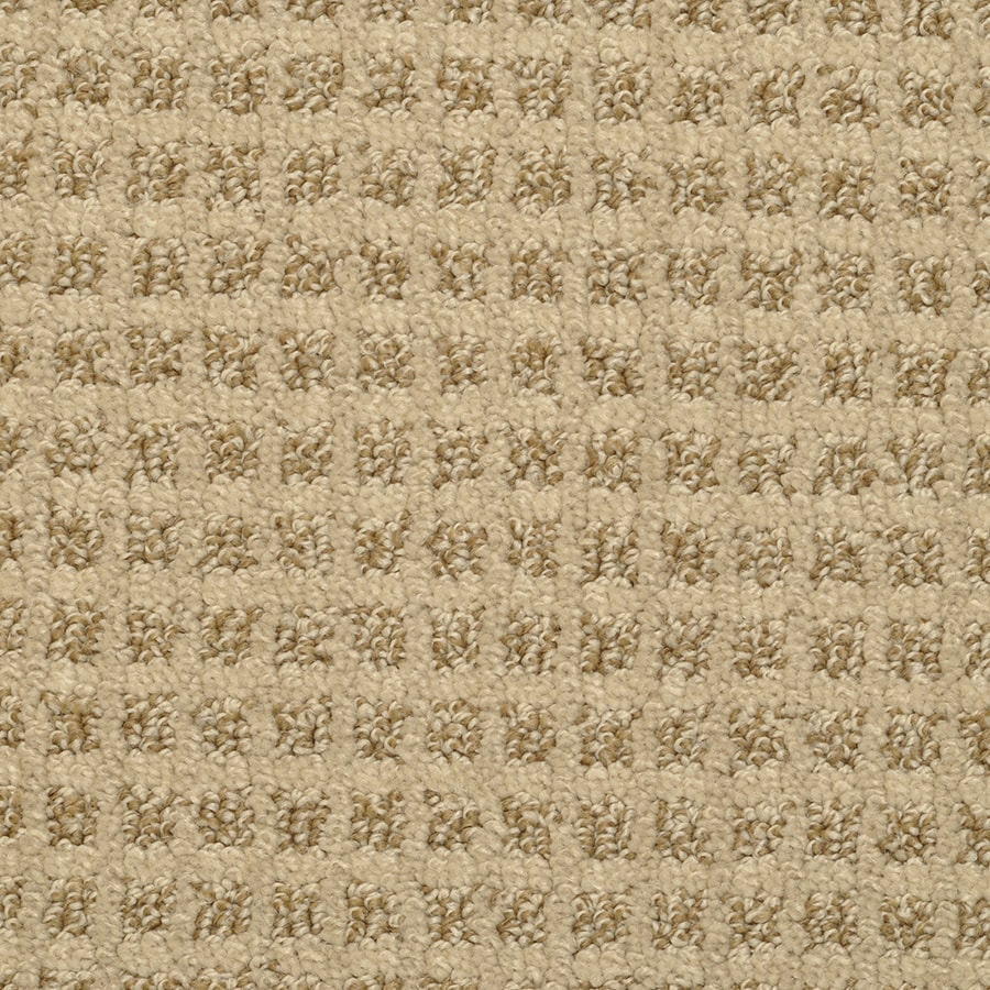 STAINMASTER Active Family Medford 12-ft W x Cut-to-Length Clam Pattern Interior Carpet