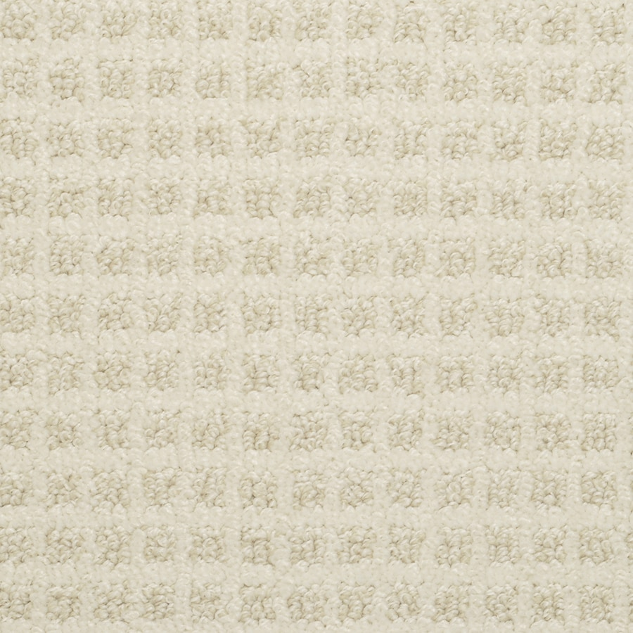 STAINMASTER Active Family Medford Sweet Rice Pattern Interior Carpet
