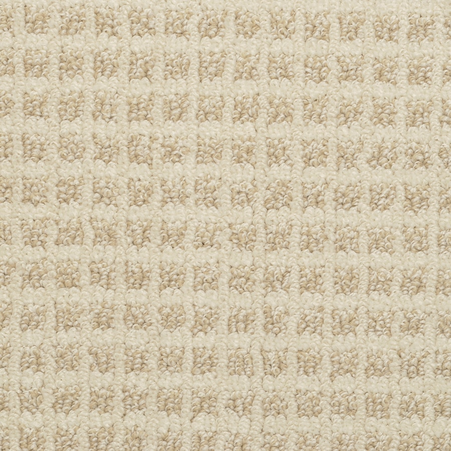 STAINMASTER Active Family Medford Fizz Pattern Interior Carpet