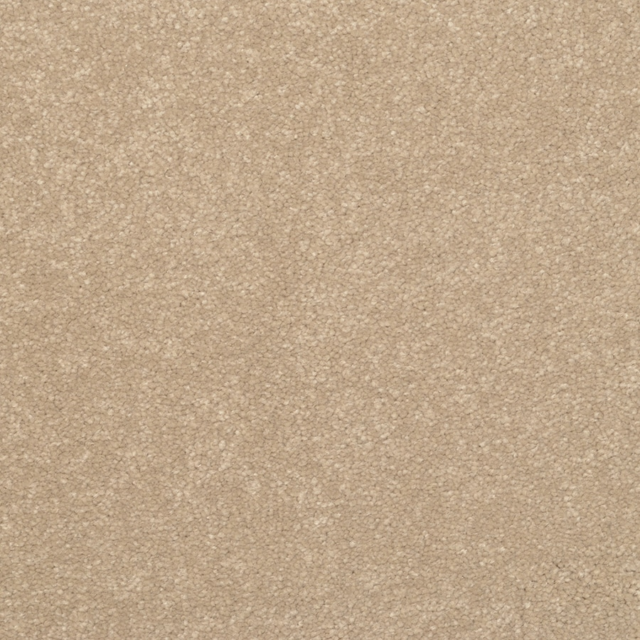 STAINMASTER Active Family Influential Vermont Textured Indoor Carpet