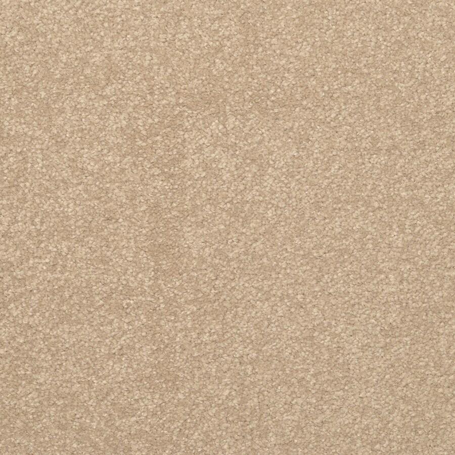 STAINMASTER Active Family Influential Gabbano Textured Interior Carpet
