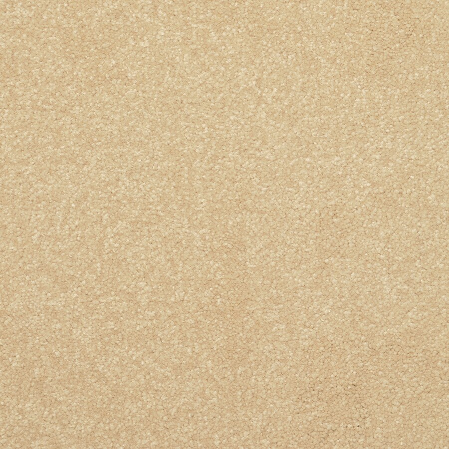 STAINMASTER Active Family Influential 12-ft W x Cut-to-Length Harp Gold Textured Interior Carpet