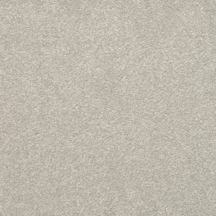 STAINMASTER Active Family Influential Winter Sky Textured Interior Carpet