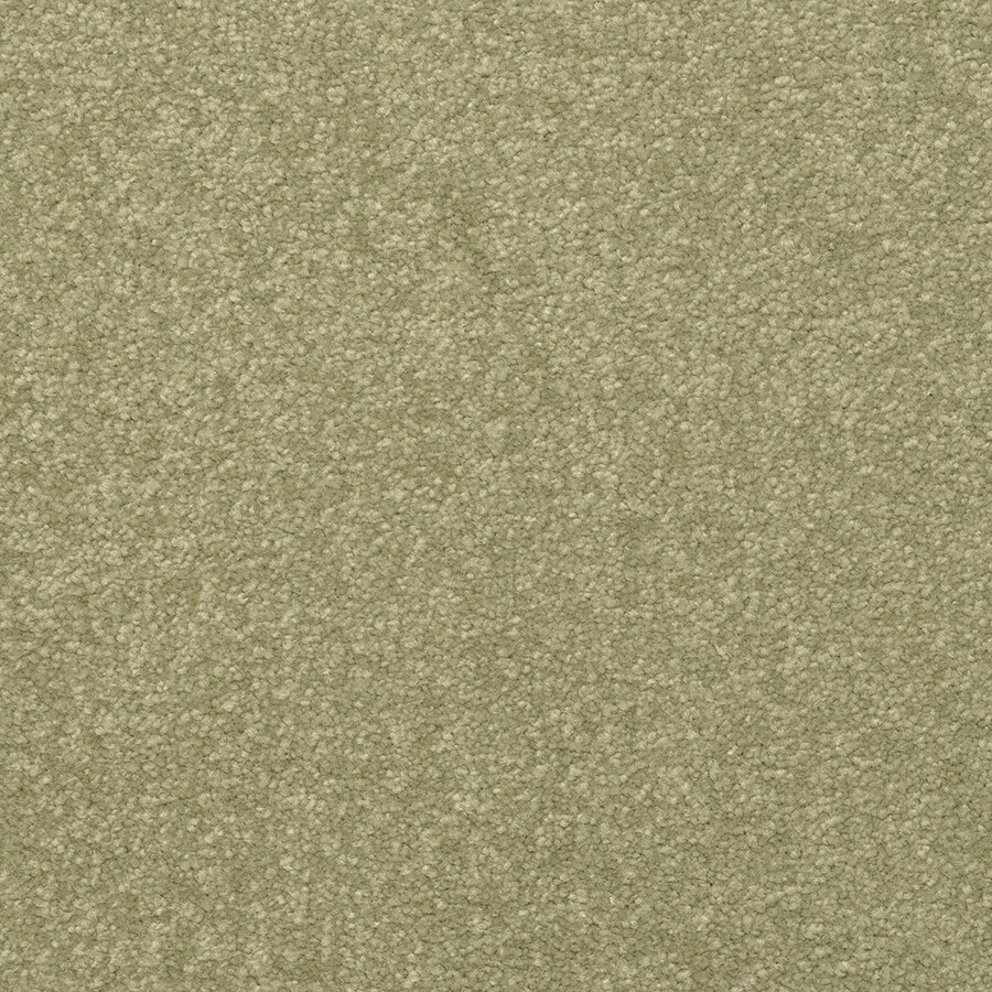 STAINMASTER Active Family Influential Jalapeno Textured Interior Carpet