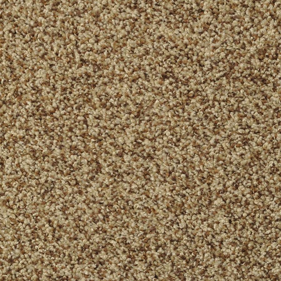 STAINMASTER Active Family On Broadway Henna Textured Indoor Carpet