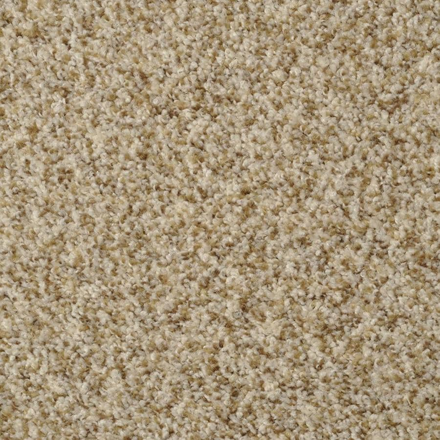 STAINMASTER Active Family On Broadway Alcapulco Sand Textured Interior Carpet