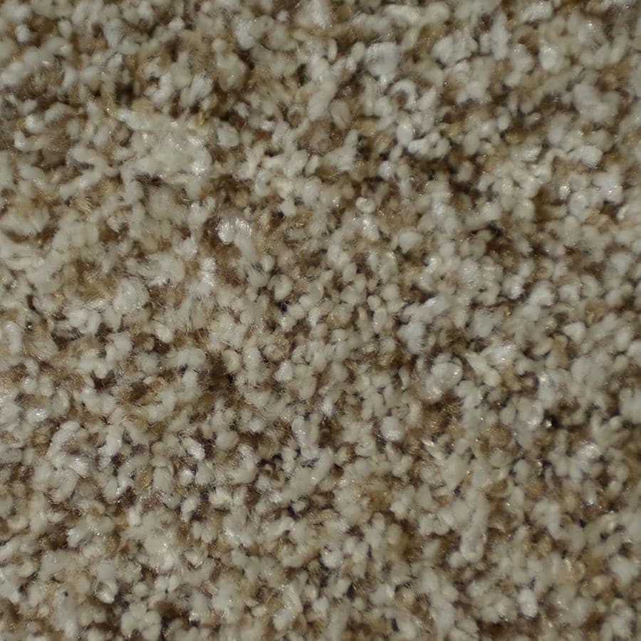 STAINMASTER Active Family On Broadway Newel Textured Interior Carpet