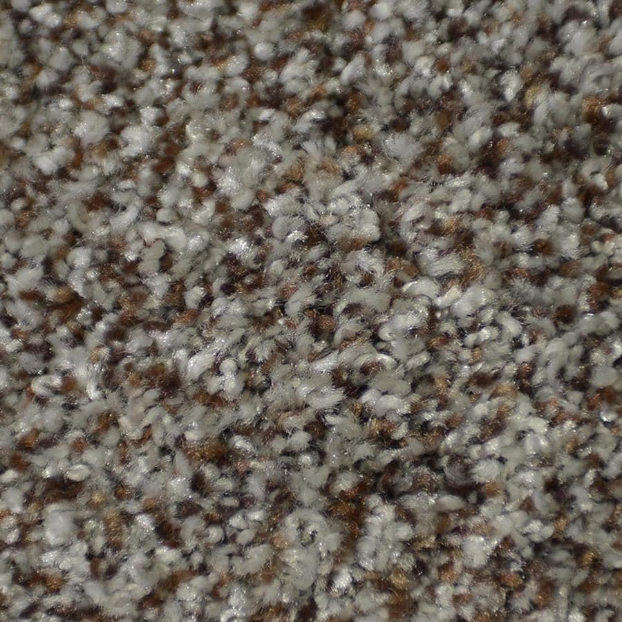 STAINMASTER Active Family On Broadway Boca Textured Interior Carpet