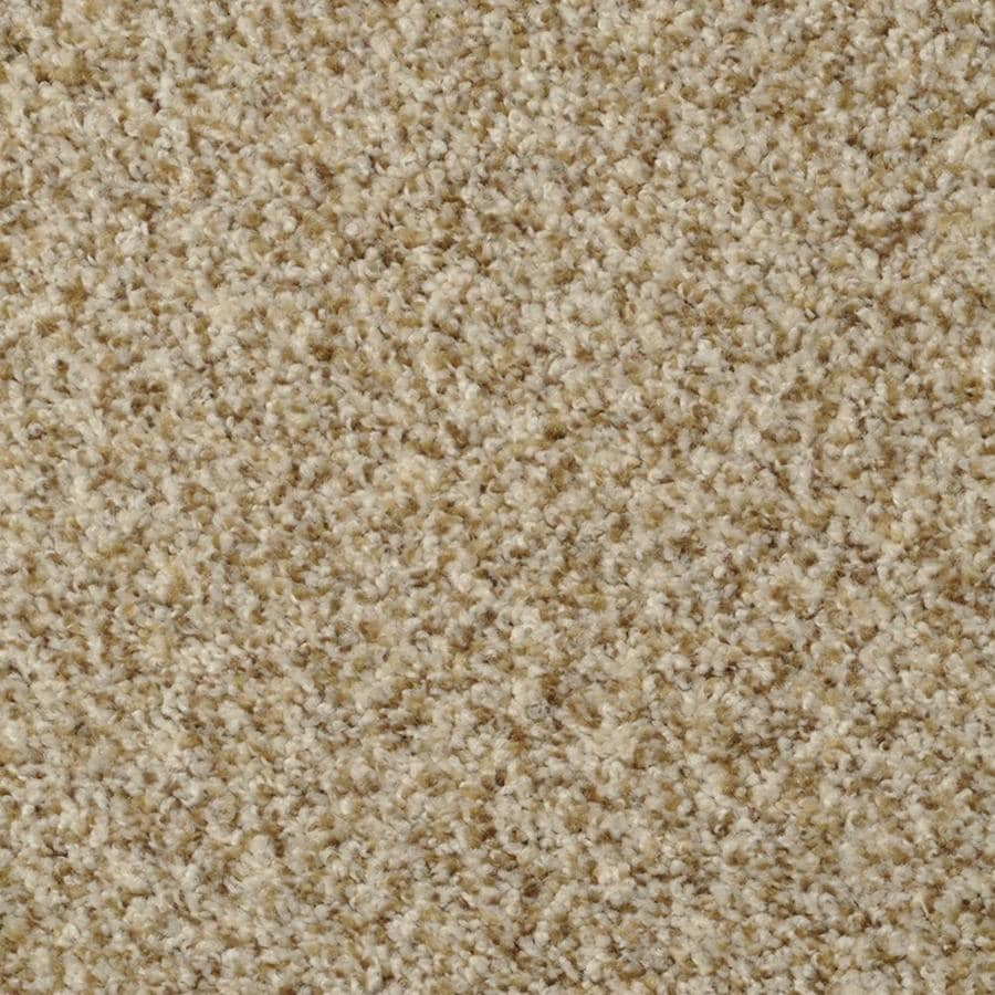 STAINMASTER Active Family Cinema Alcapulco Sand Textured Interior Carpet