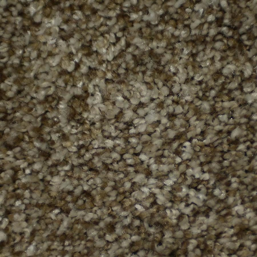 STAINMASTER Active Family Documentary Shandur Textured Interior Carpet