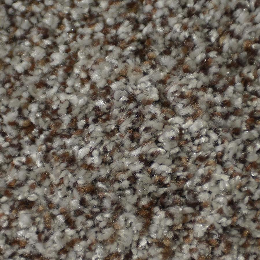 STAINMASTER Active Family Documentary 12-ft W x Cut-to-Length Boca Textured Interior Carpet