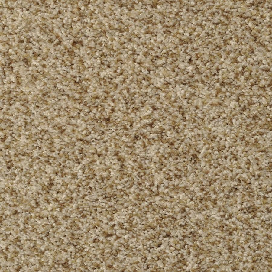 STAINMASTER Active Family Documentary 12-ft W Pebble Beach Textured Interior Carpet