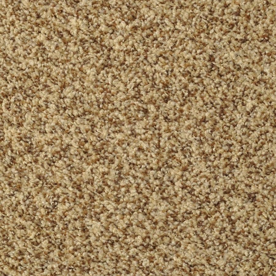 STAINMASTER Active Family Documentary Tuscany Textured Indoor Carpet