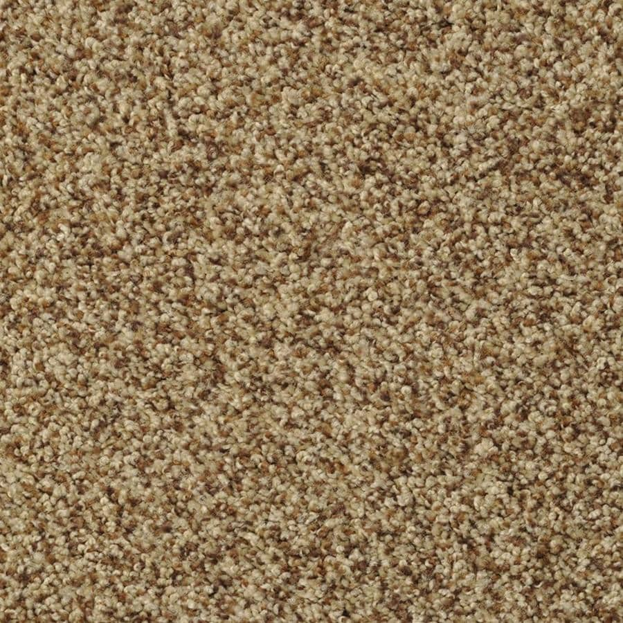 STAINMASTER Active Family Documentary Henna Textured Interior Carpet