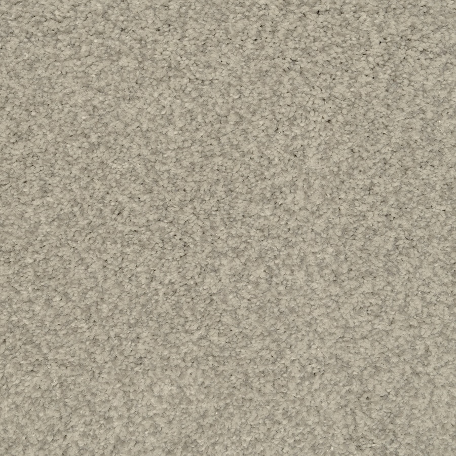 STAINMASTER Active Family Special Occasion 12-ft W x Cut-to-Length Shadow Textured Interior Carpet