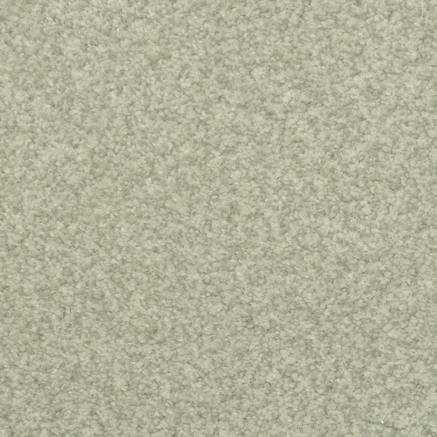 STAINMASTER Active Family Special Occasion 12-ft W x Cut-to-Length Indian Bay Textured Interior Carpet
