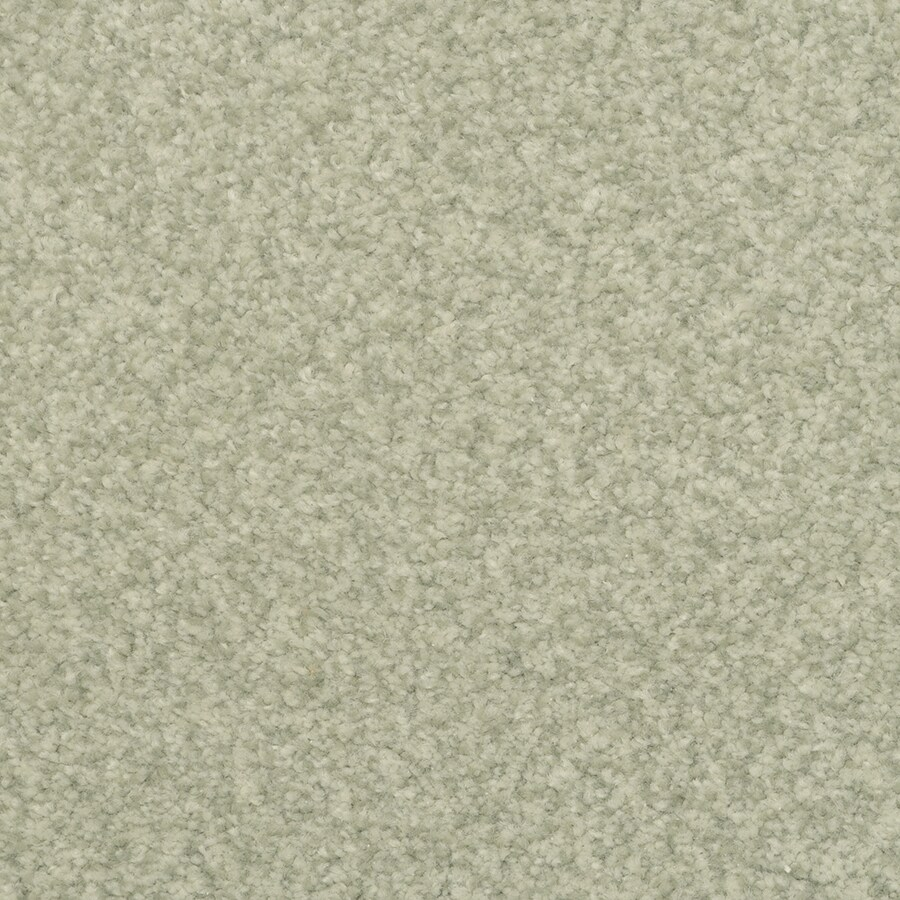 STAINMASTER Active Family Special Occasion Indian Bay Textured Indoor Carpet