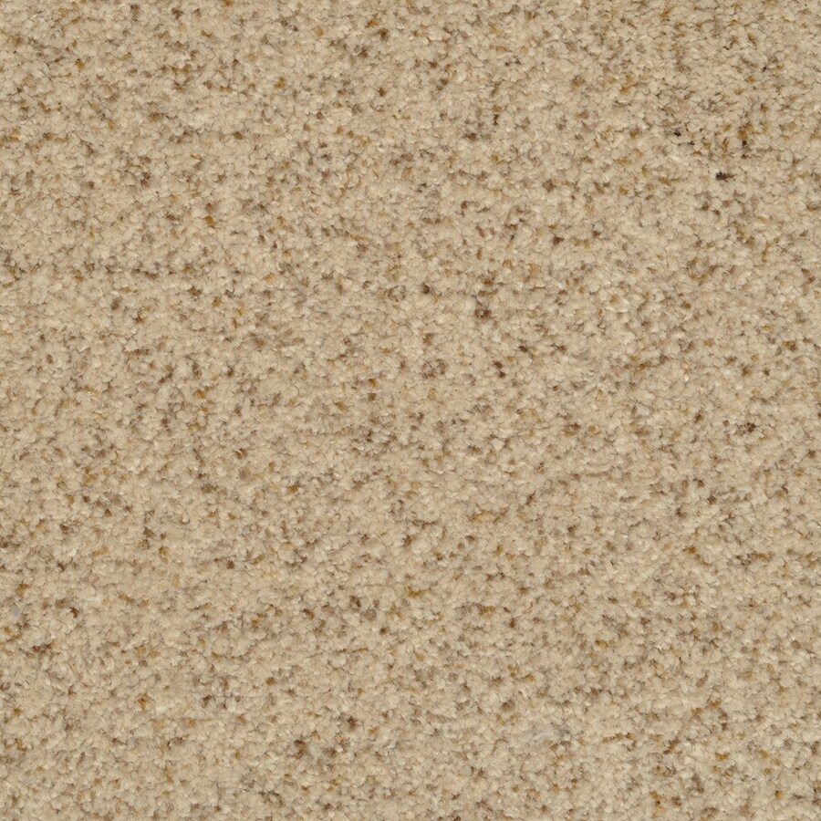 STAINMASTER Active Family Special Occasion Corniche Textured Indoor Carpet