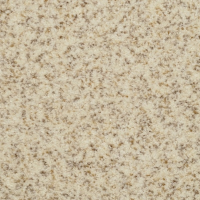 Active Family Special Occasion 12 Ft Textured Interior Carpet