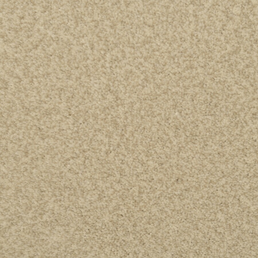 STAINMASTER Active Family Informal Affair Palomino Textured Interior Carpet