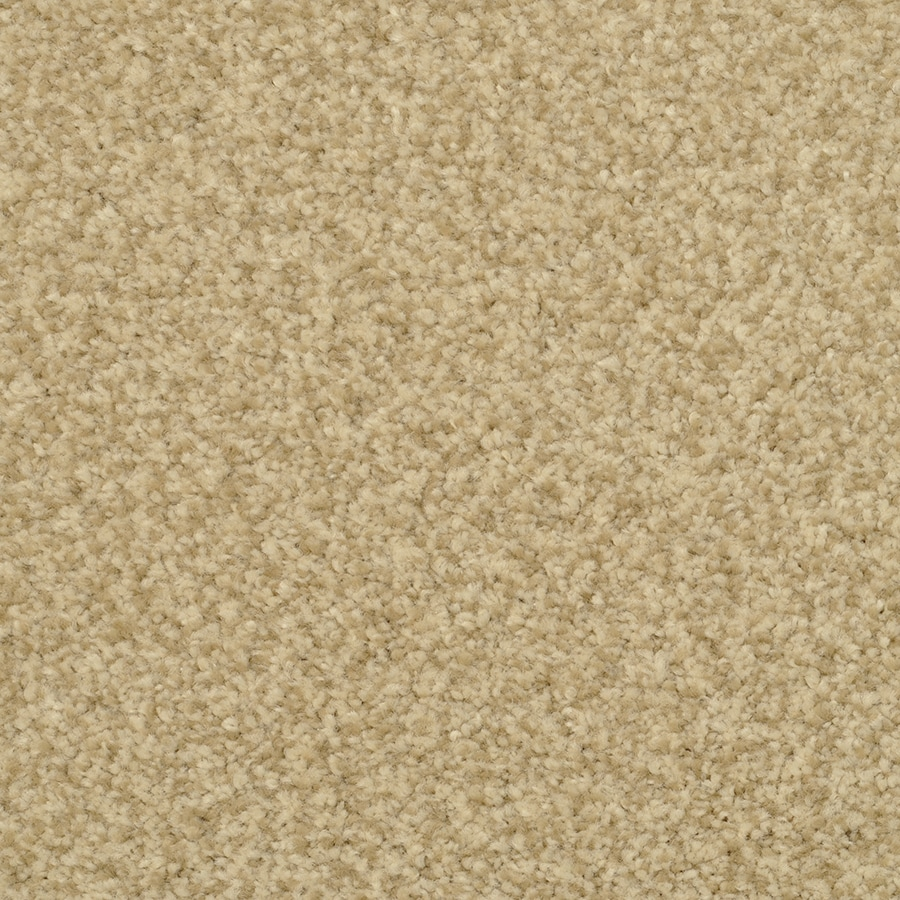 STAINMASTER Active Family Informal Affair Venetian Textured Interior Carpet