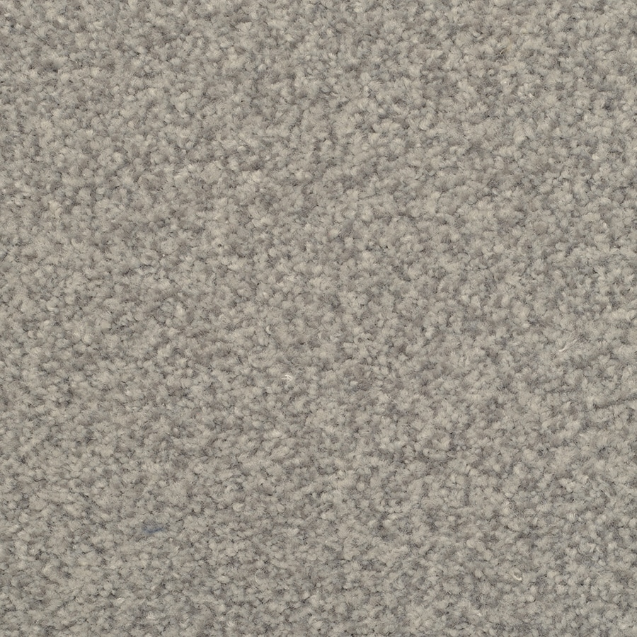 STAINMASTER Active Family Informal Affair 12-ft W x Cut-to-Length Windsor Textured Interior Carpet