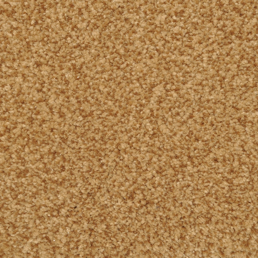 STAINMASTER Active Family Informal Affair Cavern Textured Indoor Carpet