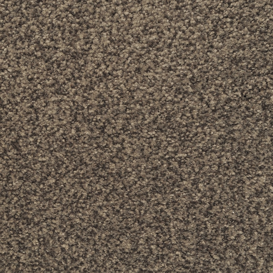 STAINMASTER Active Family Informal Affair 12-ft W x Cut-to-Length Wisteria Textured Interior Carpet