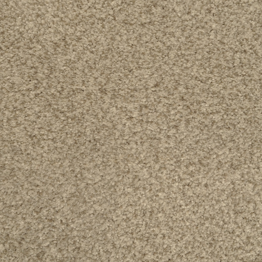 STAINMASTER Active Family Informal Affair Breezy Textured Interior Carpet