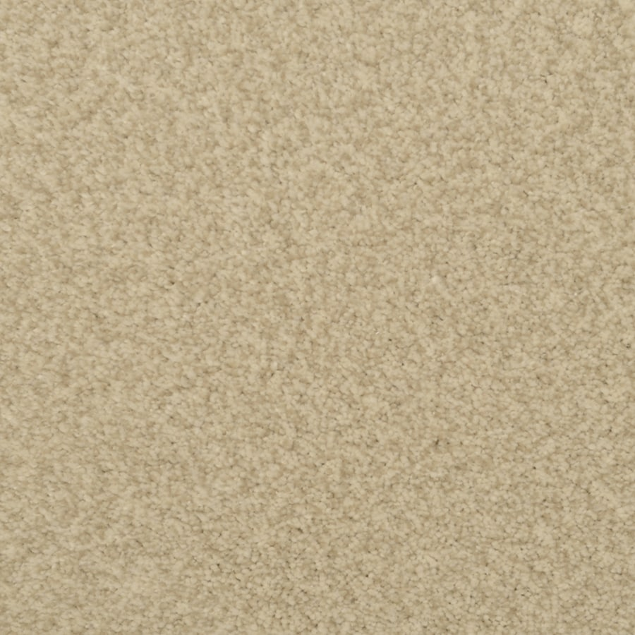 STAINMASTER Active Family Fiesta 12-ft W x Cut-to-Length Palomino Textured Interior Carpet