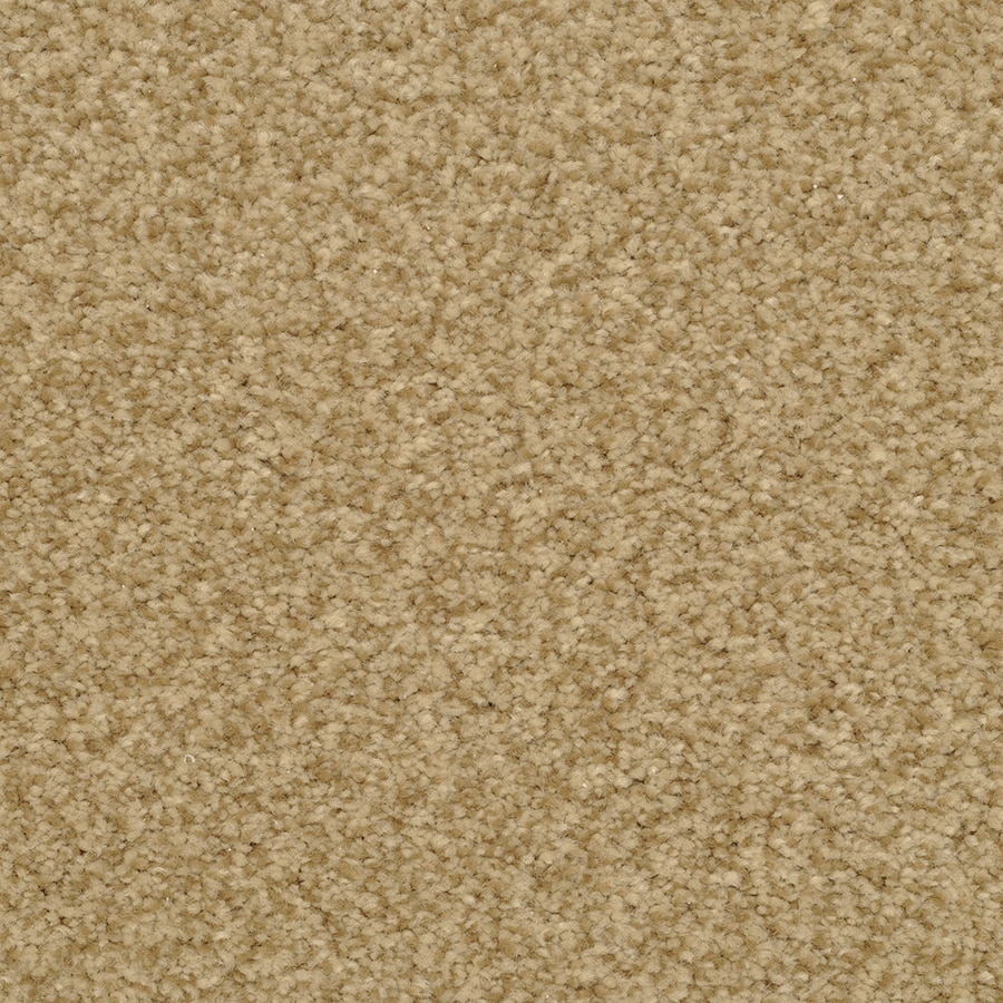 STAINMASTER Active Family Fiesta 12-ft W x Cut-to-Length Hampstead Textured Interior Carpet