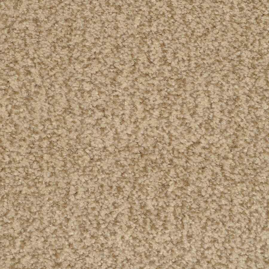 STAINMASTER Active Family Fiesta 12-ft W x Cut-to-Length Tango Textured Interior Carpet