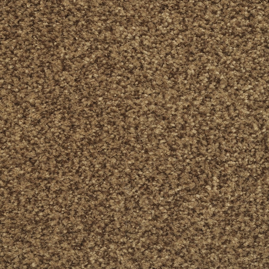 STAINMASTER Active Family Fiesta 12-ft W x Cut-to-Length Autumn Bud Textured Interior Carpet