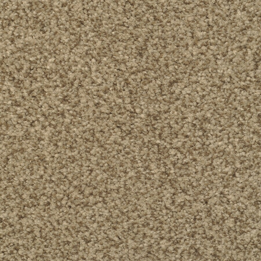 STAINMASTER Active Family Fiesta 12-ft W x Cut-to-Length Illusion Textured Interior Carpet