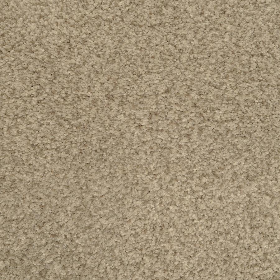 STAINMASTER Active Family Fiesta Breezy Textured Indoor Carpet