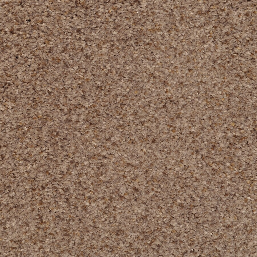 STAINMASTER Active Family Fiesta 12-ft W x Cut-to-Length Expressway Textured Interior Carpet