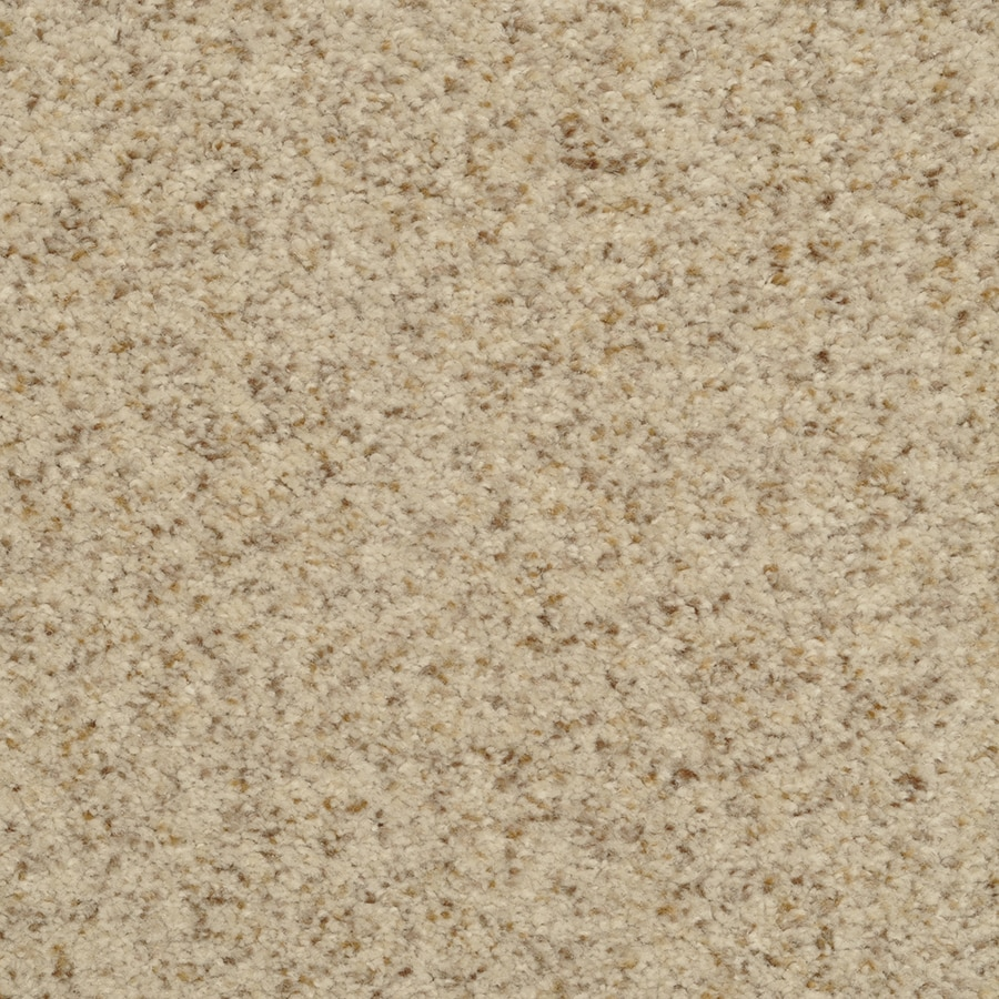 STAINMASTER Active Family Fiesta 12-ft W x Cut-to-Length Birch Mist Textured Interior Carpet