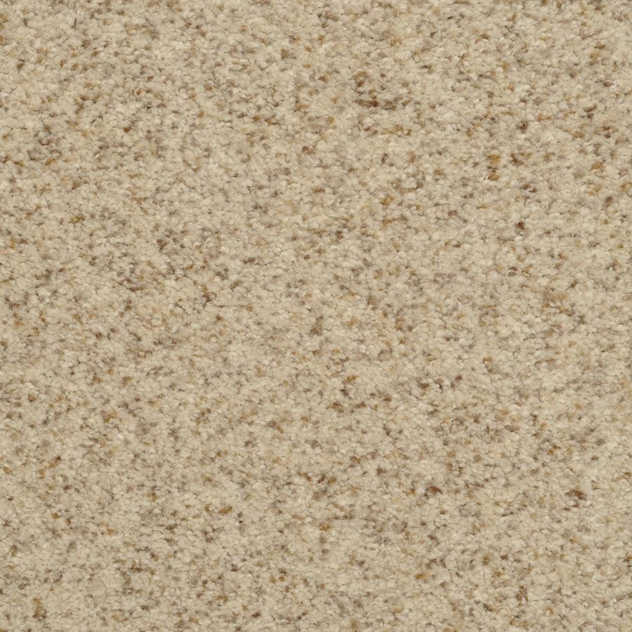STAINMASTER Active Family Fiesta Birch Mist Textured Interior Carpet