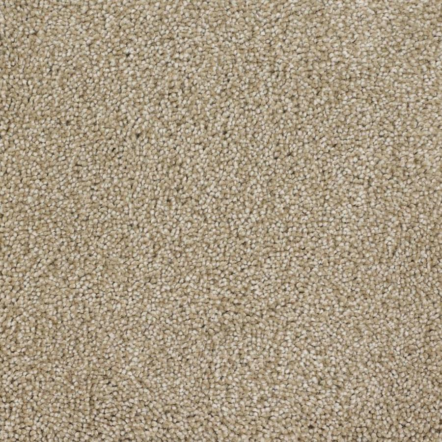 STAINMASTER TruSoft Pleasant Point 12-ft W x Cut-to-Length Avalon Textured Interior Carpet