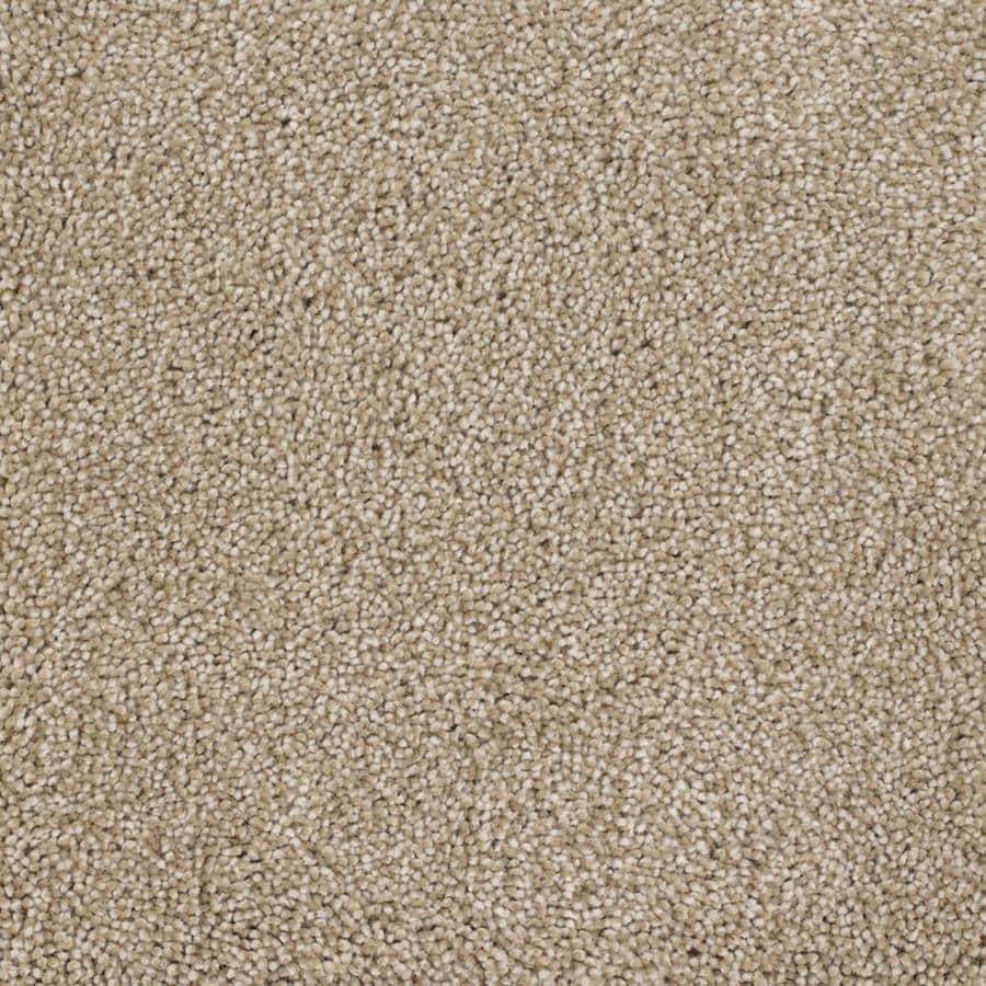 STAINMASTER TruSoft Pleasant Point Avalon Textured Interior Carpet
