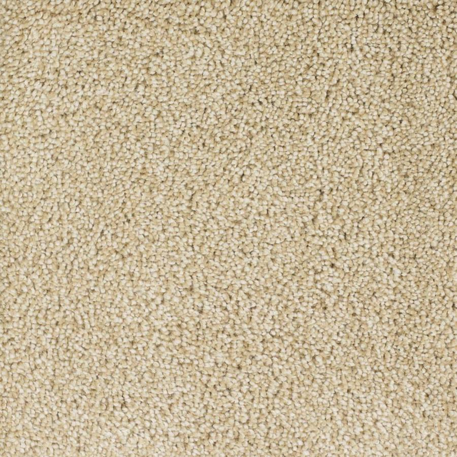 STAINMASTER TruSoft Pleasant Point 12-ft W x Cut-to-Length Cavalier Textured Interior Carpet