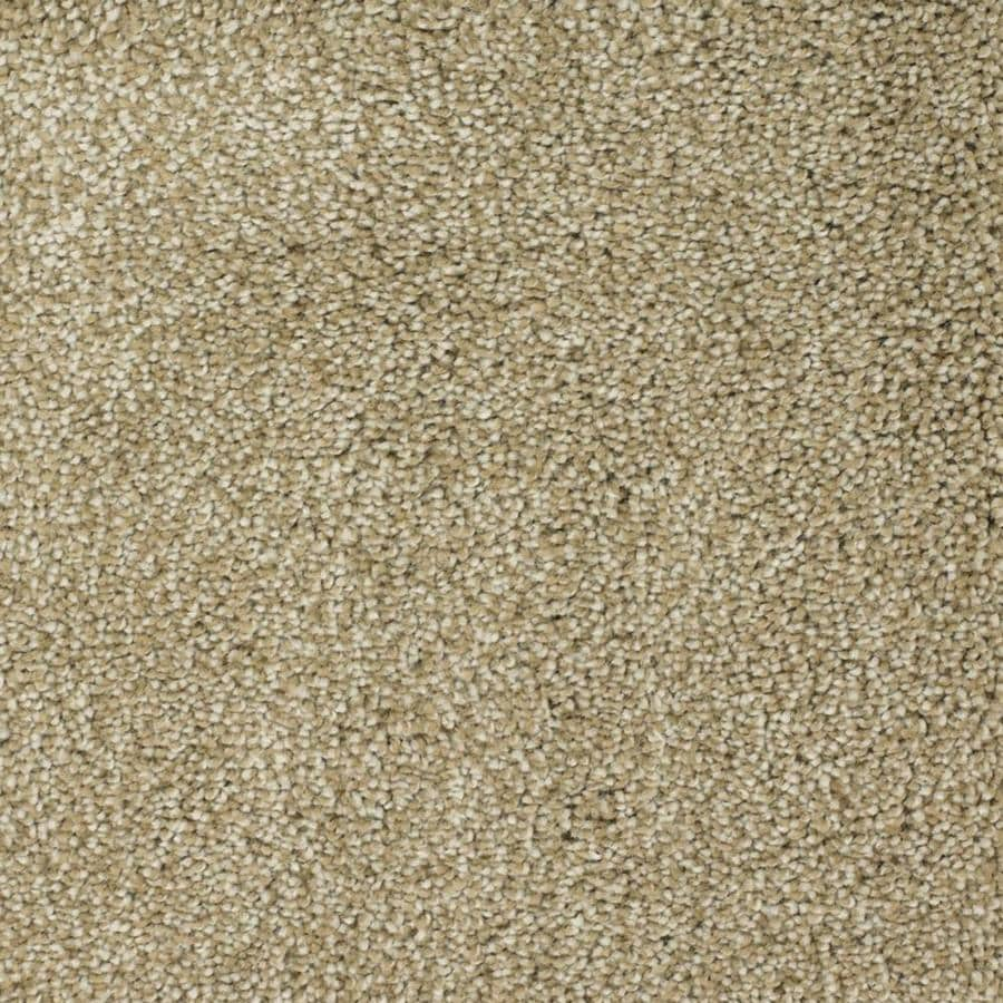 STAINMASTER TruSoft Pleasant Point Weathered Textured Interior Carpet