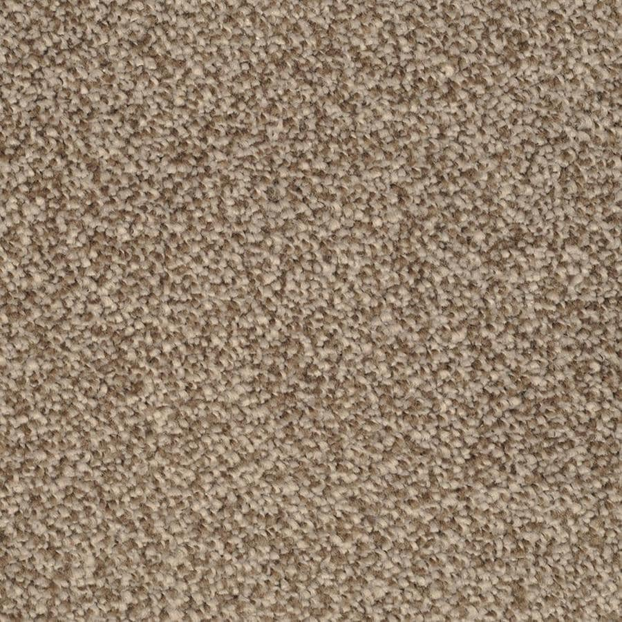 STAINMASTER TruSoft Briar Patch Pebbled Shore Textured Indoor Carpet