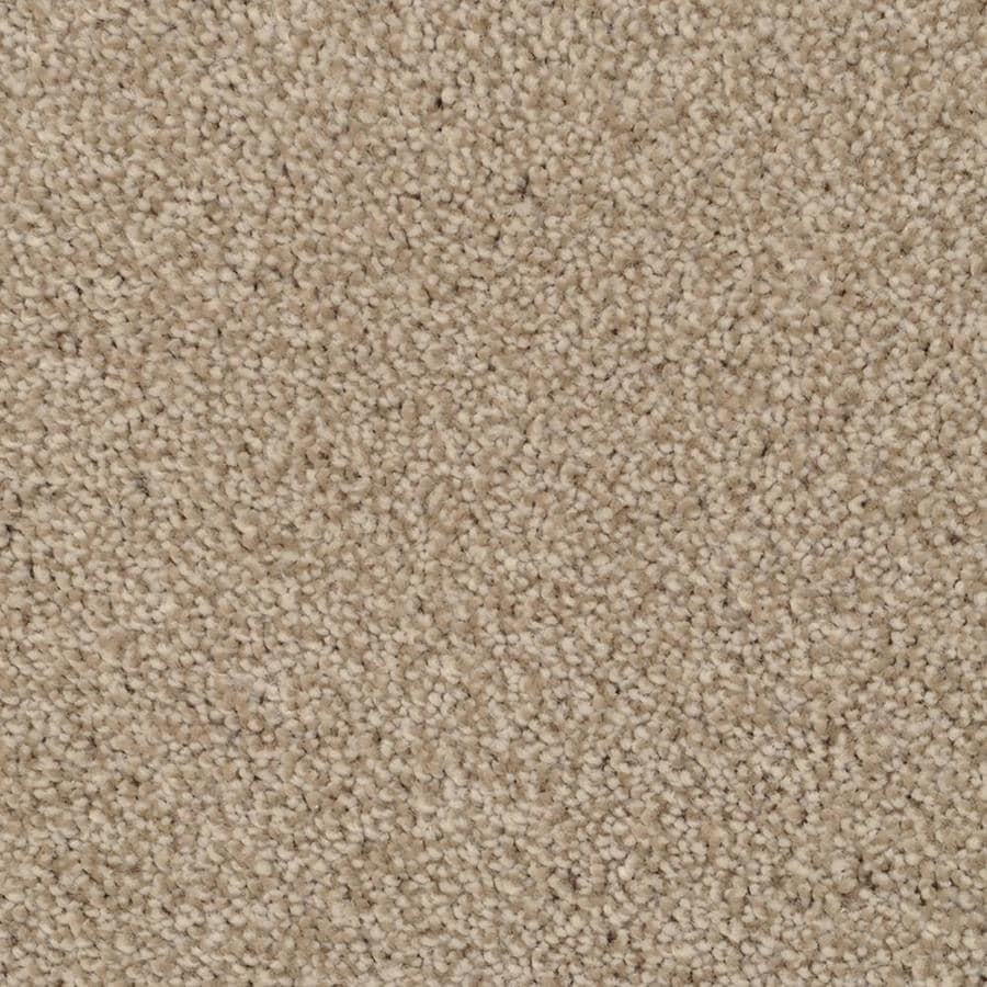 STAINMASTER TruSoft Briar Patch Zumba Textured Indoor Carpet
