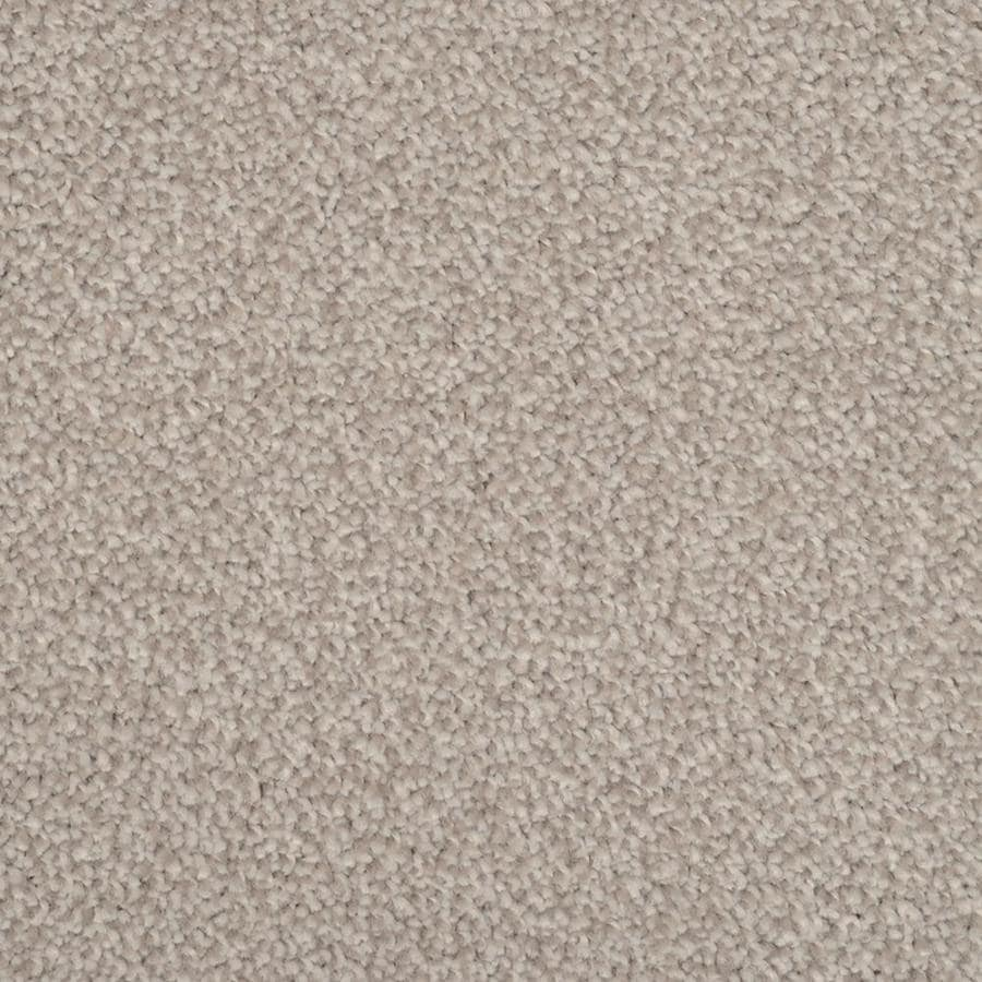 STAINMASTER TruSoft Briar Patch 12-ft W Pewter Textured Interior Carpet