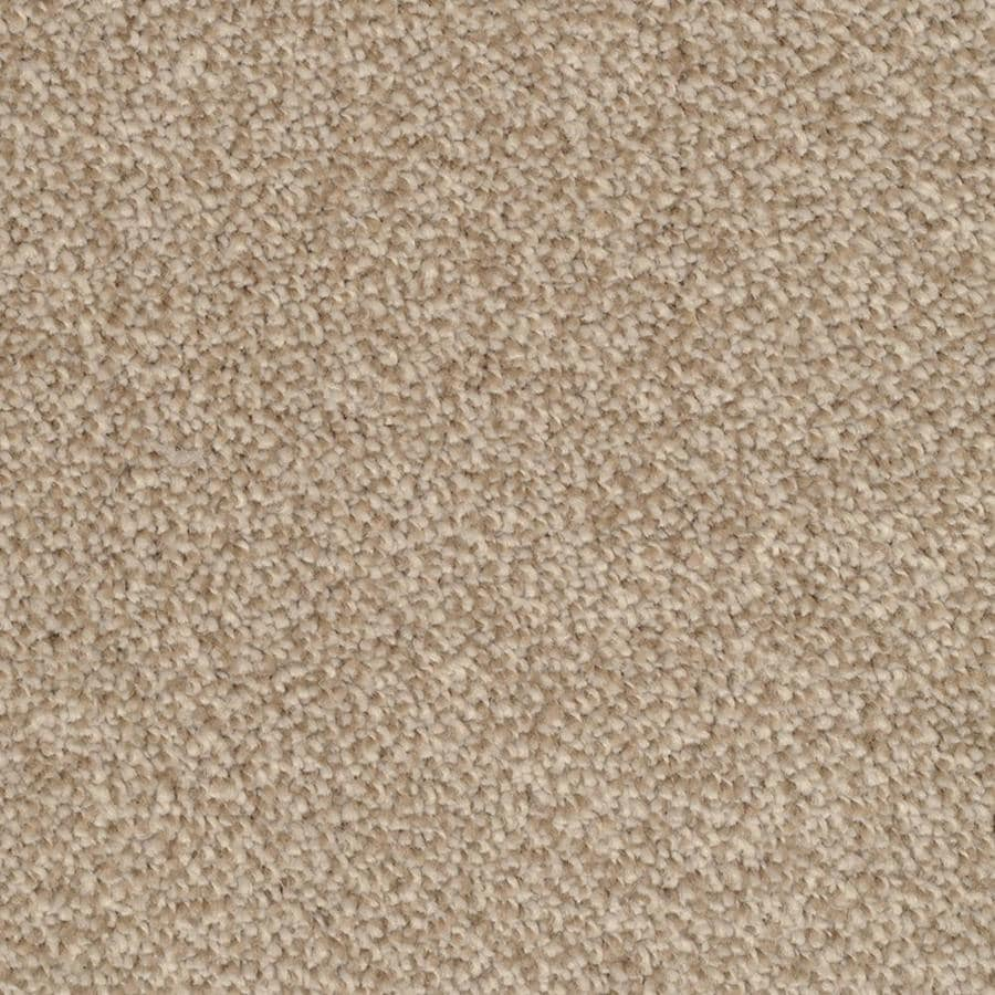 STAINMASTER TruSoft Shafer Valley 12-ft W Reverse Textured Interior Carpet