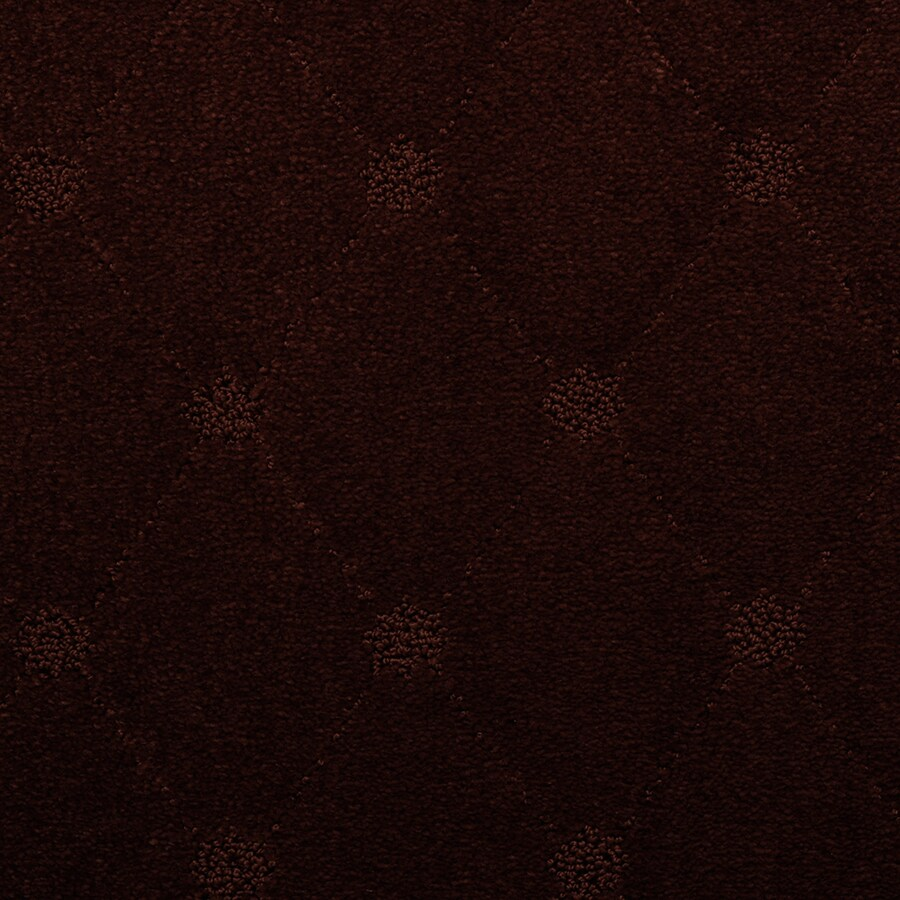 STAINMASTER TruSoft Hunts Corner Hampton Cut and Loop Indoor Carpet