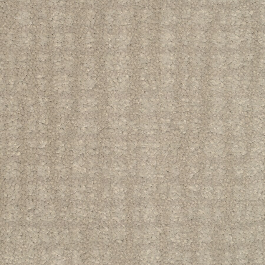 STAINMASTER Trusoft Pine Chapel Ultimate Interior Carpet