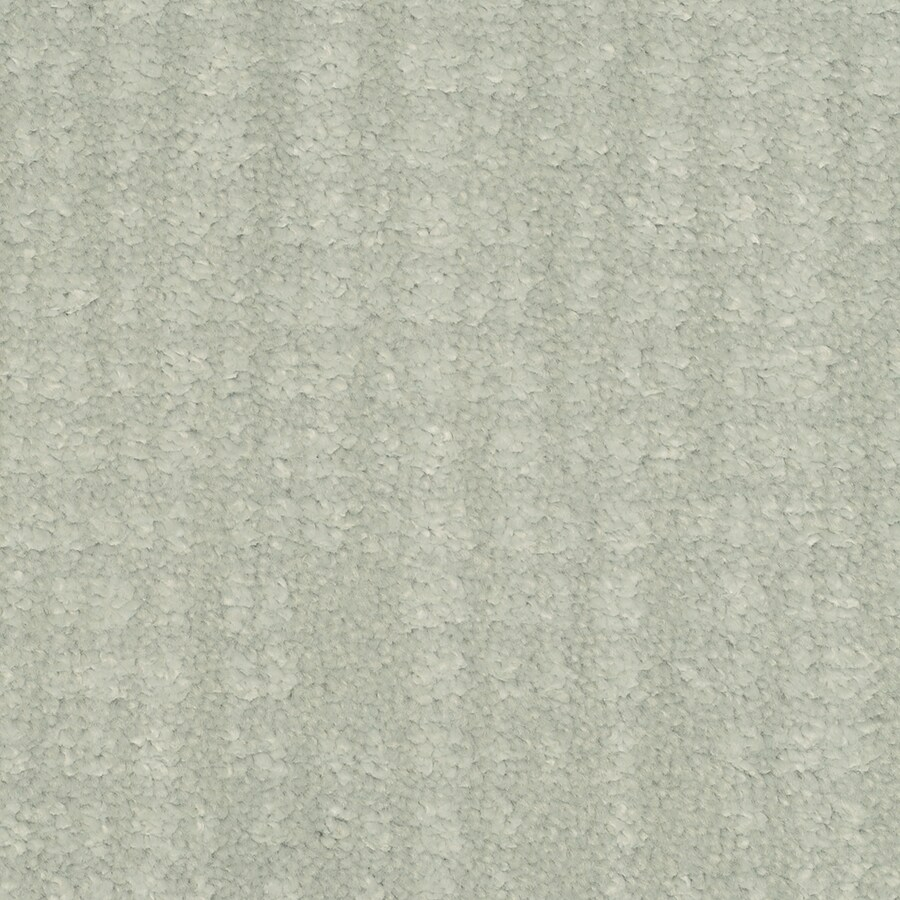 STAINMASTER TruSoft Pine Chapel Pinwale Cut and Loop Indoor Carpet