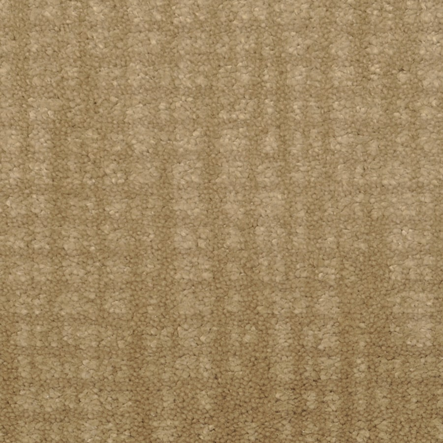 STAINMASTER Trusoft Pine Chapel Tart Interior Carpet